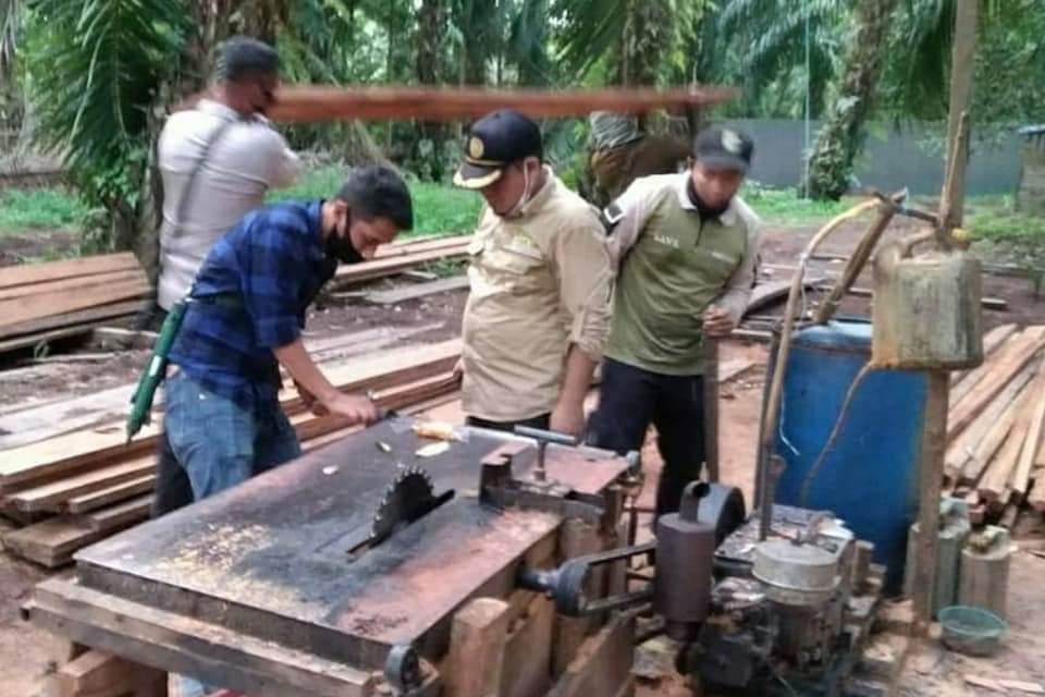 17 Meter Kubik Kayu Ilegal di 3 Sawmill Diamankan Gakkum KLHK dan Tim Gabungan