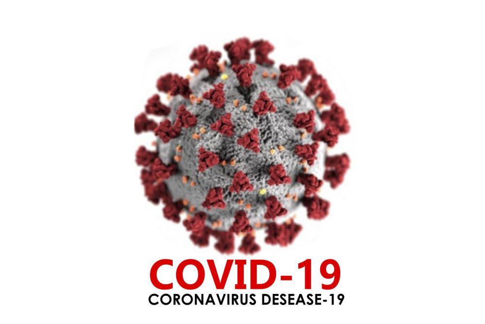 248 Pasien Sembuh dari Covid-19