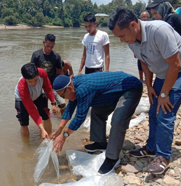 35 Ribu Benih Ikan Nilem Disebar di Hulu Sungai Kuantan