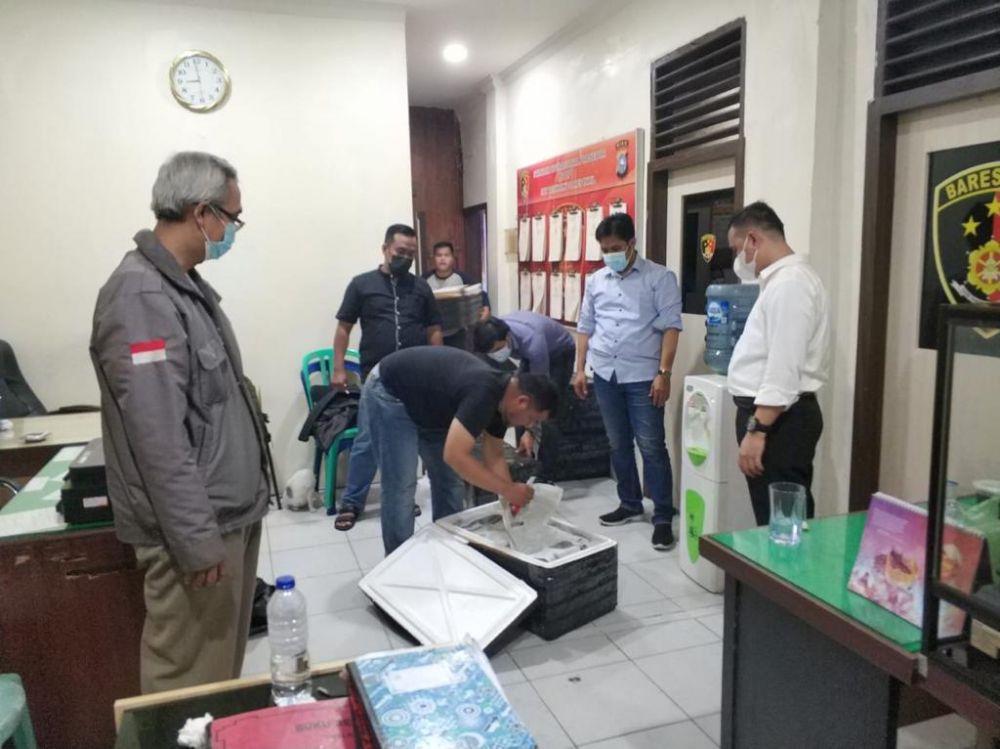 Coba Selundupkan 65 Ribu Benih Lobster ke Vietnam, Warga Inhil Diamankan