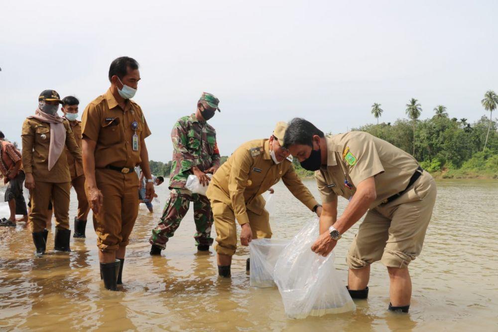 DKP Riau Tebar Benih Ikan di Kuansing