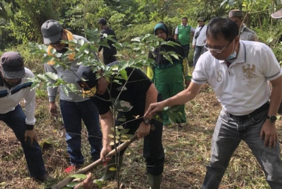 DLHK Riau Tanam 10 Ribu Bibit Pohon