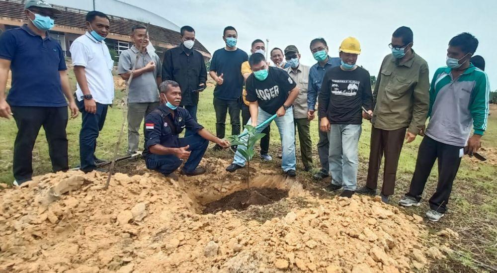 DLHK Riau Tanami Pohon Katapang Kencana di Kawasan Stadion Utama