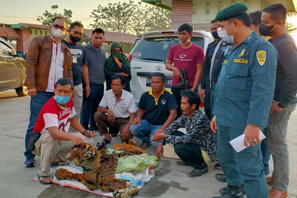 Jual Kulit Harimau, 4 Pelaku di Tangkap di SPBU Kampar Riau
