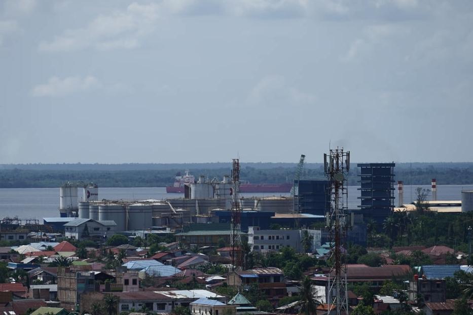Harga CPO Kembali Ambles, Buat Harga Sawit Riau Turun Pekan Ini