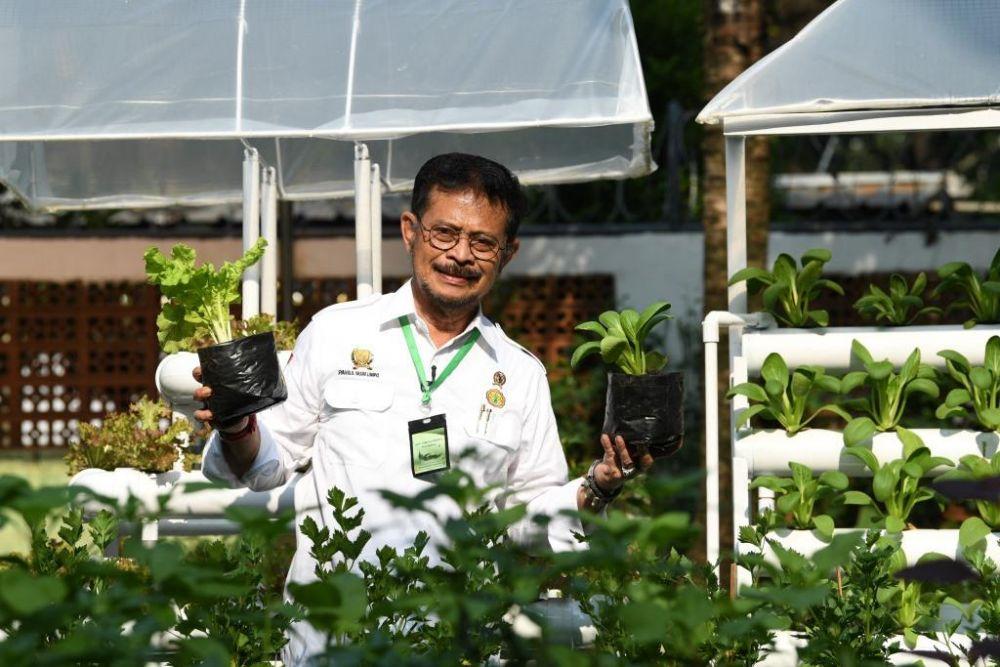 Ini Program Utama Untuk Wujudkan ketahanan Pangan di Indonesia