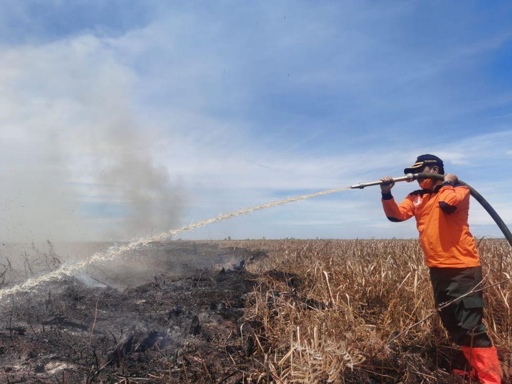 Karhutla di Rohil dan Rohul, Gubernur Riau: Ikuti Prosedur sesuai Aturan Buka Lahan