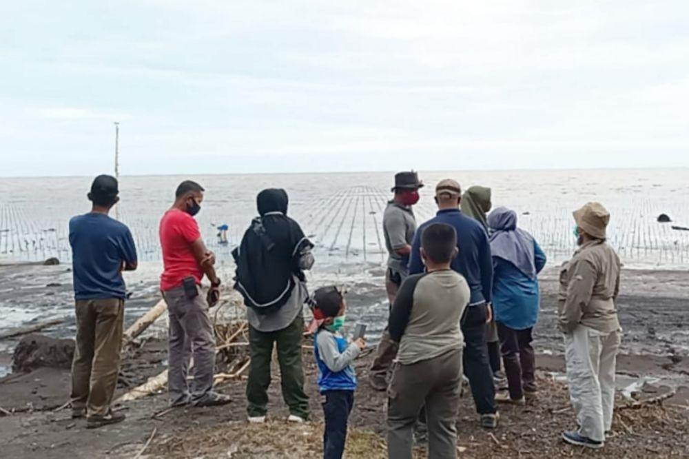 Kisah Penanaman Mangrove KLHK di Batas Negara