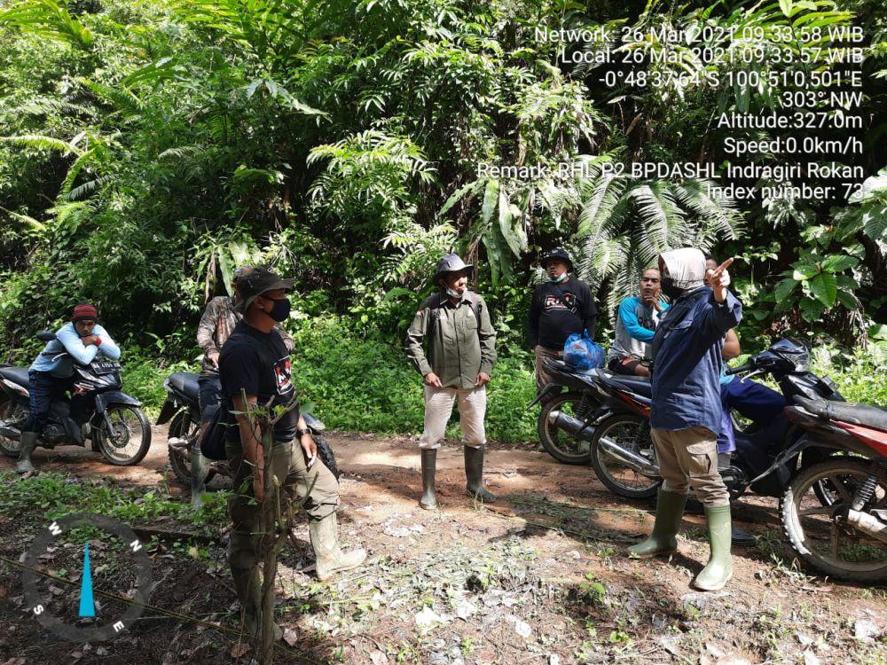 KLHK Lakukan Rehabilitasi Hutan dan Lahan di Tesso Nilo