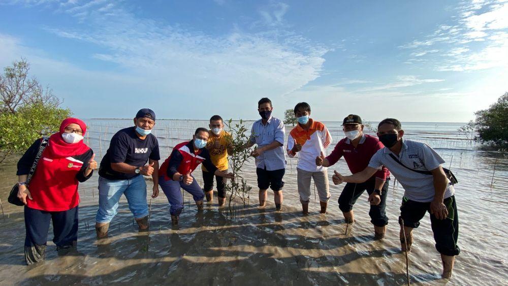 Ombak Selat Malaka Menghantam, 14 Ribu Bakau Ditanam di Bengkalis Riau