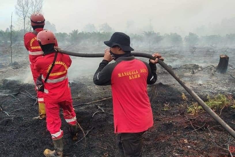Pagi Ini 50 Titik Panas Terpantau di Wilayah Riau
