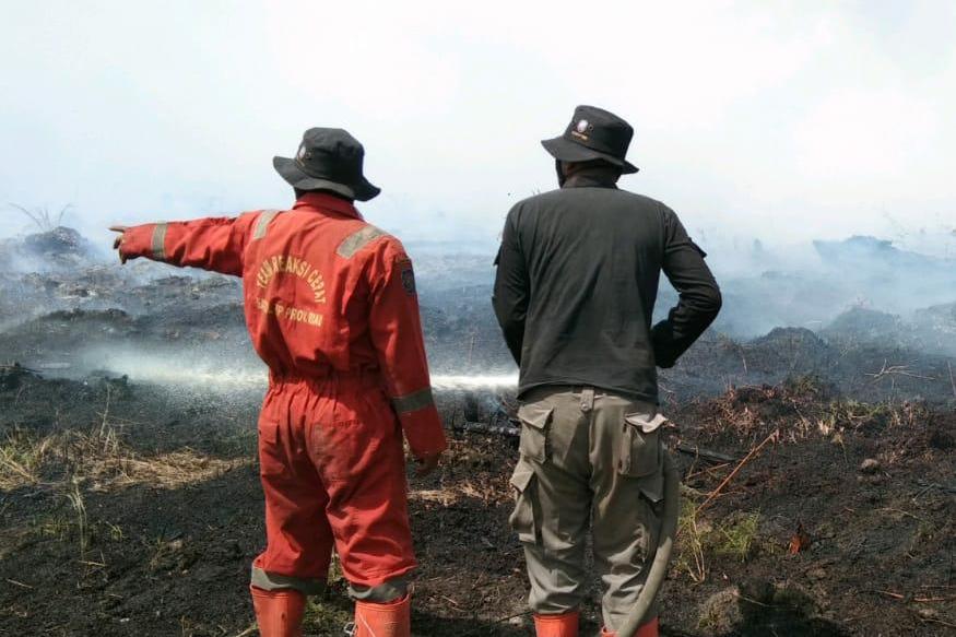 Pantang Pulang Sebelum Padam! Tim Satgas Karhutla Riau Berjibaku Blokade Api