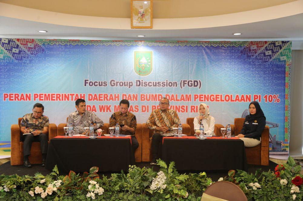 Pemprov Riau Gelar FGD Peran Pemerintah dan BUMD