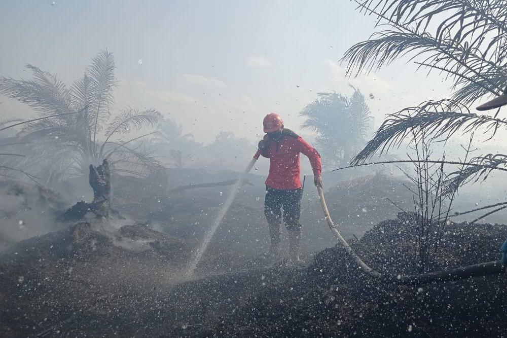 Penetapan Status Siaga Darurat Karhutla Riau Diapresiasi Presiden