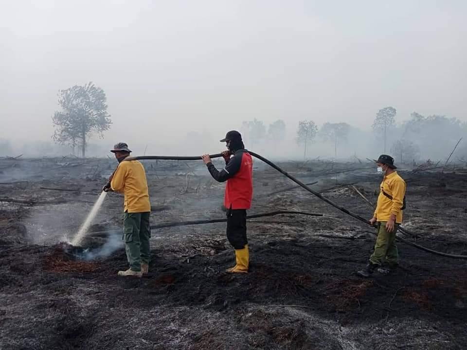 Petugas Terus Berjibaku, Luas Lahan yang Terbakar 248 Hektar