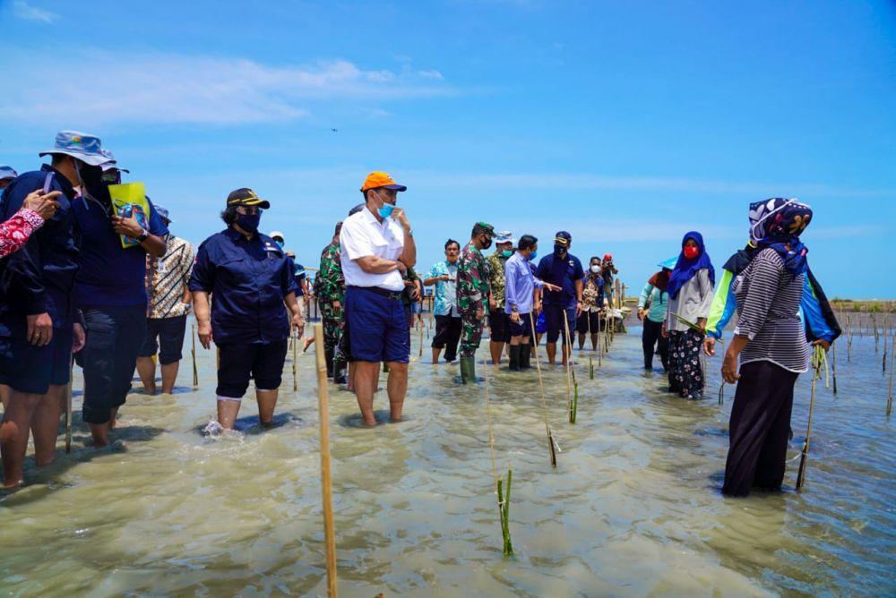 Rehabilitasi Mangrove Libatkan Kelompok Tani Kawasan Pesisir