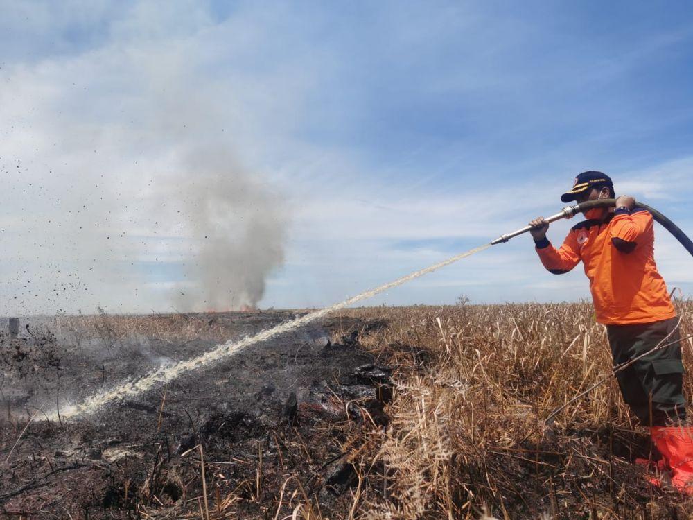 Satgas Karhutla Riau Lakukan Pendinginan Kebakaran Hutan Lindung Bukit Suligi