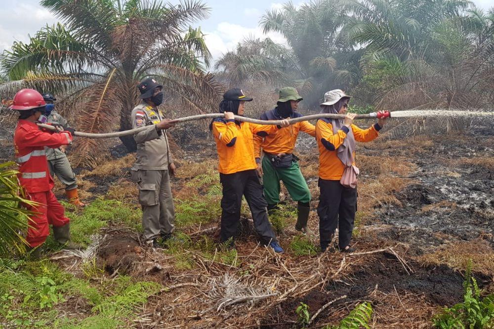 Satgas Karhutla Riau Padamkan Kebakaran di Taman Nasional Bukit Tigapuluh