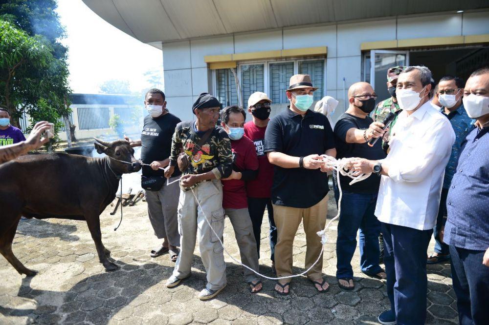 Serahkan Sapi Kurban ke PWI Riau, Gubri: Semoga Dapat Bermanfaat