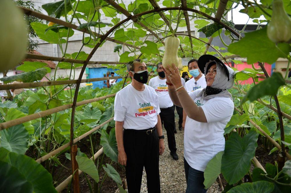 Taman Edukasi Pertanian Organik Diharapkan jadi Sarana Belajar Anak Milenial