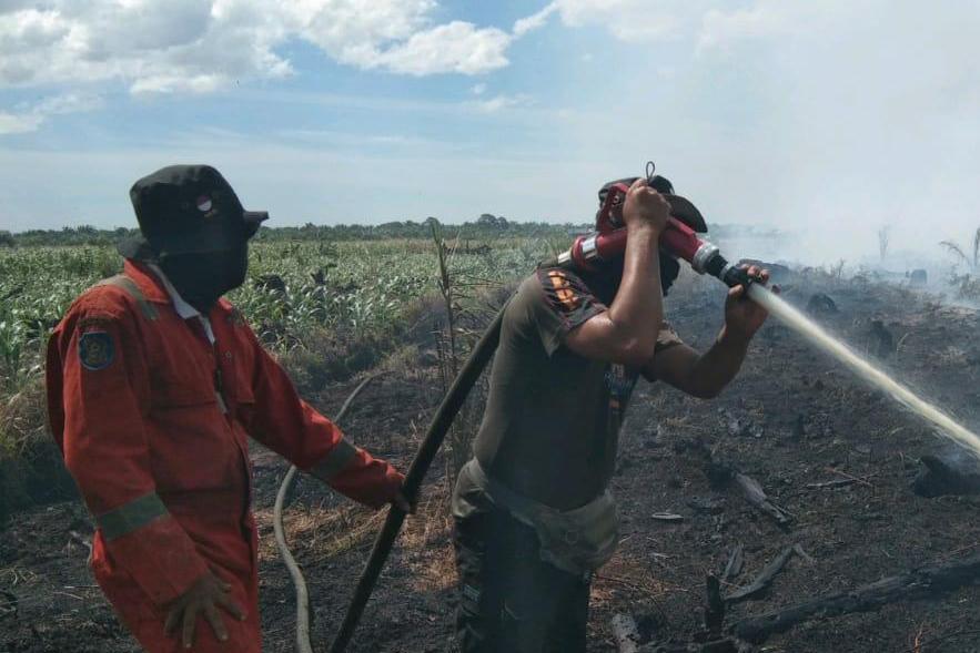 TRC Satpol PP Riau Bantu Padamkan Karhutla di Rohil