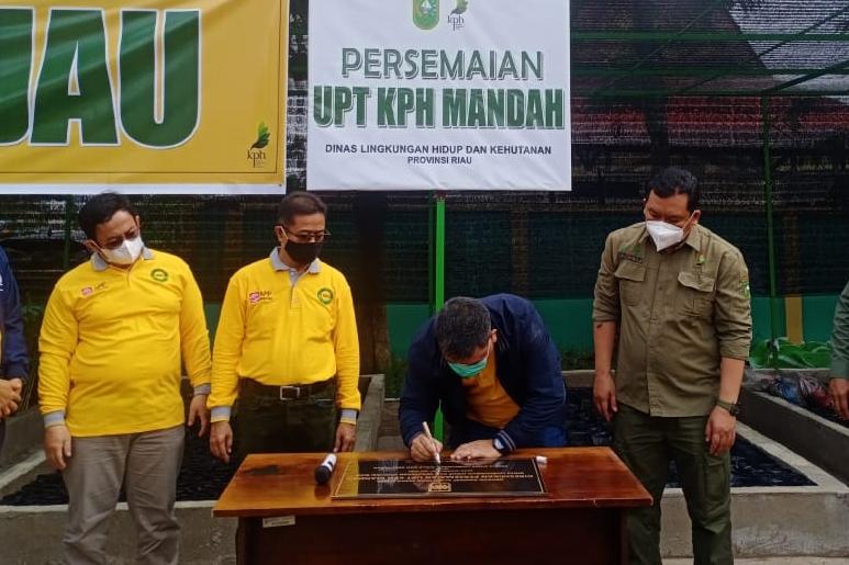 Wujudkan Program Riau Hijau, Kadis LHK Resmikan Persemaian KPH Mandah