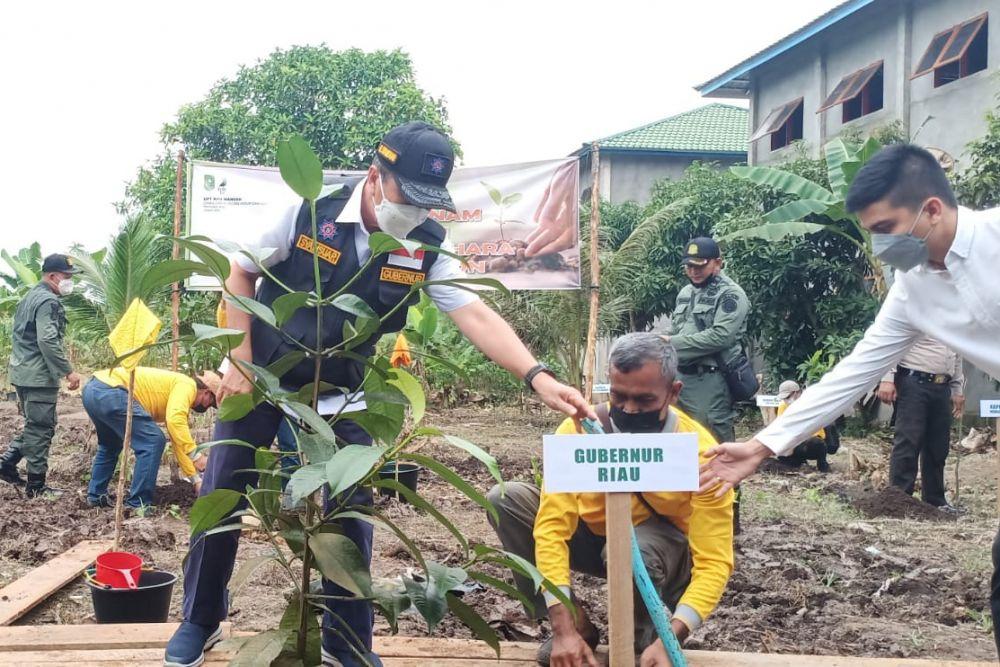 Wujudkan Riau Hijau, Gubri Berikan 10 Ribu Bibit Tanaman di Inhil